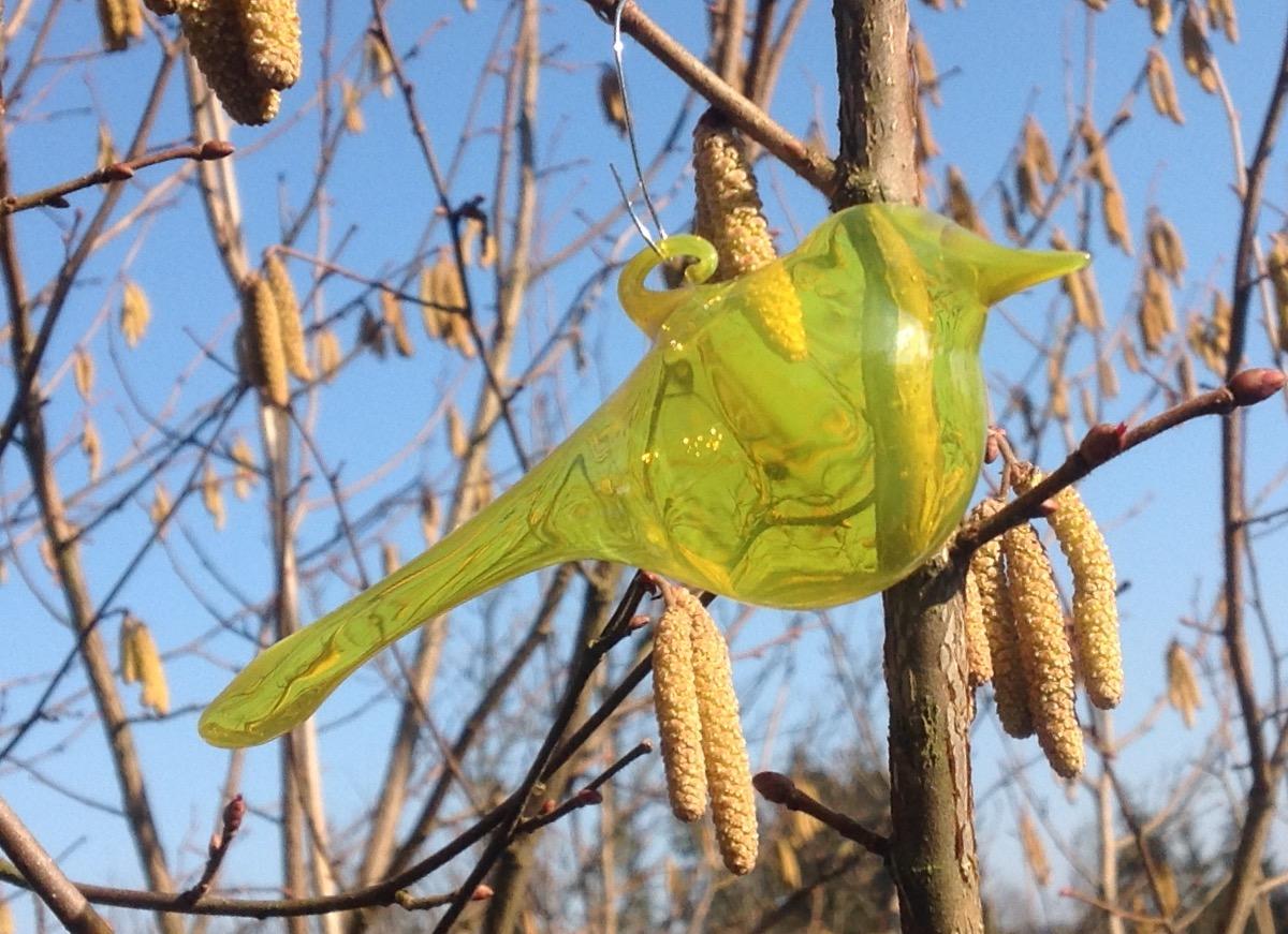 Ptáček světle žlutý